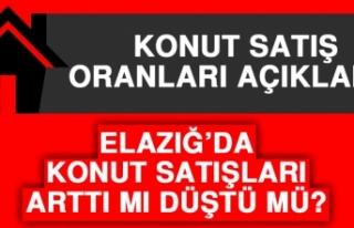 Elazığ'da Kasım Ayında Kaç Adet Konut Satışı...