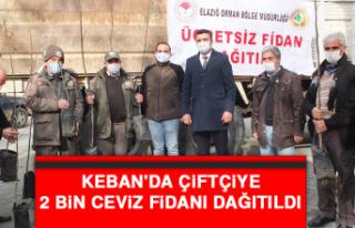 Keban'da Çiftçiye 2 Bin Ceviz Fidanı Dağıtıldı