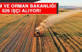 Tarım ve Orman Bakanlığı 826 İşçi Alıyor!