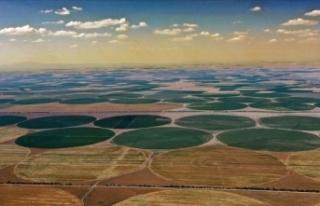 Türkiye'de tarımsal üretimin sigortası: Konya...
