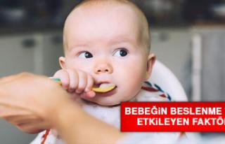 Bebeğin Beslenme Tarzını Etkileyen Faktörler