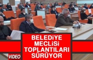 Belediye Meclisi Toplantıları Sürüyor