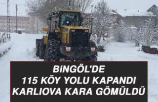 Bingöl'de 115 köy yolu kapandı, Karlıova...