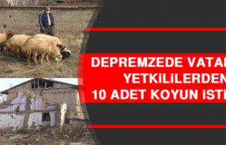 Depremzede Vatandaş, Yetkililerden 10 Adet Koyun...