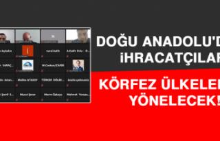 Doğu Anadolu'daki İhracatçılar Körfez Ülkelerine...