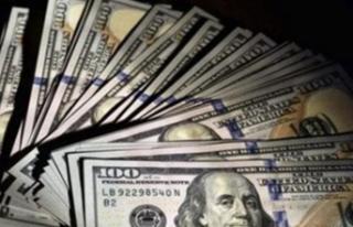 Dolara Yatırım Yapan Kaybedecek