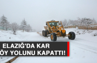 Elazığ'da Kar 88 Köy Yolunu Kapattı!