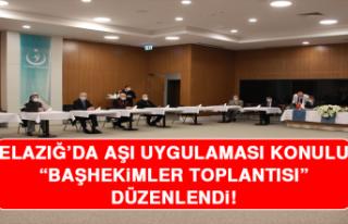 Elazığ'da Aşı Uygulaması Konulu Başhekimler...
