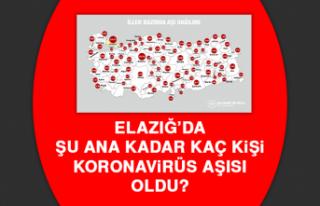Elazığ'da şu ana kadar kaç kişi koronavirüs...