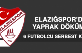 Elazığspor'da 6 Futbolcu Serbest Kaldı
