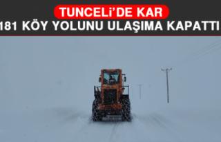 Tunceli'de Kar, 181 Köy Yolunu Ulaşıma Kapattı