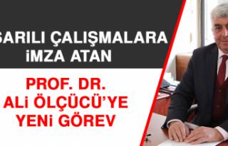 Başarılı Çalışmalara İmza Atan Prof. Dr. Ali...