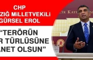 CHP Elazığ Milletvekili Erol: Terörün Her Türlüsüne...