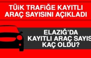 Elazığ'da Kayıtlı Araç Sayısı Kaç Oldu?
