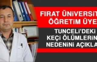 Fırat Üniversitesi Öğretim Üyesi Tunceli'deki...