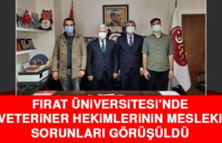 Fırat Üniversitesi'nde Veteriner Hekimlerinin...