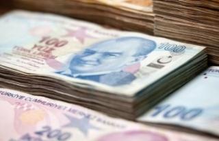 Kalkınma ajanslarının 2021 yılı transfer ödeneği...