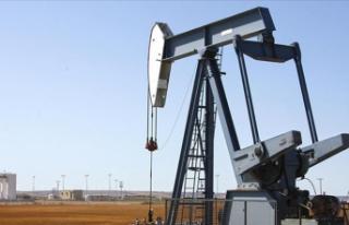 ABD Petrol Sondaj Kule Sayısı 6 Adet Arttı