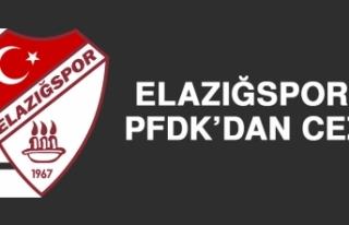 Elazığspor'a PFDK'dan Ceza