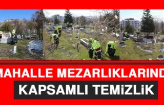 Mahalle Mezarlıklarında Kapsamlı Temizlik