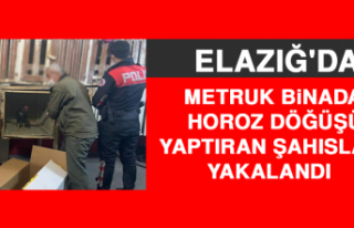 Metruk Binada Horoz Döğüşü Yaptıran Şahıslar...