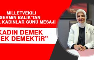 Milletvekili Sermin Balık'tan Dünya Kadınlar...