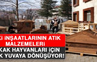TOKİ İnşaatlarının Atık Malzemeleri Sokak Hayvanları...