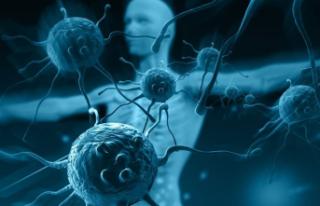 Zayıf Bağışıklık Sisteminin Belirtileri Ve Nedenleri