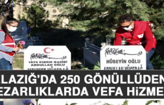 Elazığ'da 250 Gönüllüden, Mezarlıklarda...
