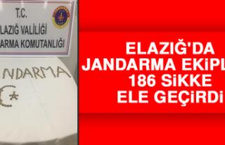 Elazığ'da Jandarma Ekipleri 186 Sikke Ele Geçirdi