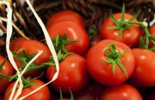 İstanbul'da Nisan'da en çok domatesin...