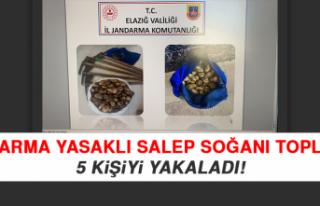Jandarma Yasaklı Salep Soğanı Toplayan 5 Kişiyi...