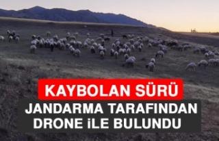 Kaybolan Sürü, Jandarma Tarafından Drone İle Bulundu