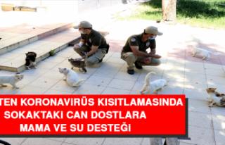 Polisten Koronavirüs Kısıtlamasında Sokaktaki...