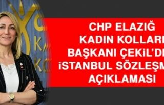 CHP Elazığ Kadın Kolları Başkanı Çekil'den...