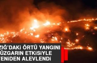 Elazığ'daki Örtü Yangını Rüzgarın Etkisiyle...