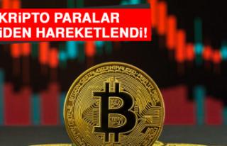 Kripto Paralar Yeniden Hareketlendi