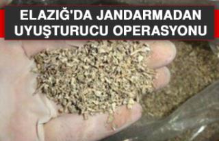 Elazığ'da Jandarmadan Uyuşturucu Operasyonu
