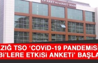 ETSO Covid-19 Pandemisinin KOBİ'lere Etkisi Anketi...