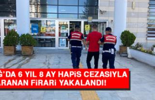 Elazığ'da 6 Yıl 8 Ay Hapis Cezasıyla Aranan...