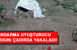 Jandarma Uyuşturucu Firarisini Çadırda Yakaladı