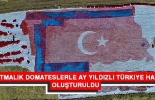 Kurutmalık Domateslerle Ay Yıldızlı Türkiye Haritası...