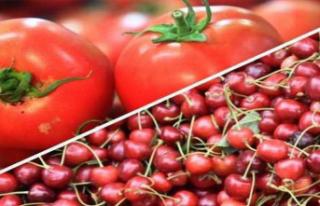Meyve Sebze İhracatında Şampiyon Kiraz ve Domates