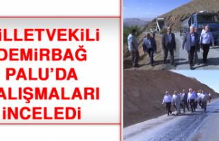 Milletvekili Demirbağ, Palu'da Çalışmaları...