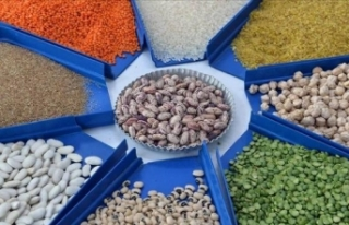 Türkiye'nin bakliyat ve hububat ihracatı arttı