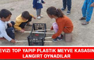 Cevizi Top Yapıp Plastik Meyve Kasasında Langırt...
