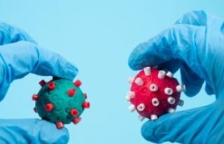 COVID-19 ve grip aşıları aynı dönemde yapılabilir...