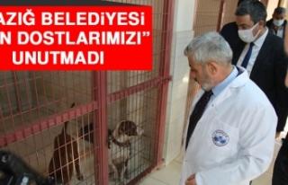 """Elazığ Belediyesi """"Can Dostlarımızı"""" Unutmadı"""
