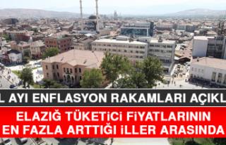 Elazığ, Tüketici Fiyatlarının En Fazla Arttığı...