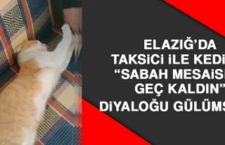 """Elazığ'da Taksici İle Kedinin """"Sabah Mesaisine..."""